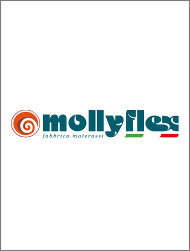 The company offices of Mollyflex